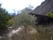 Продается , земля, участок в Орджоникидзе